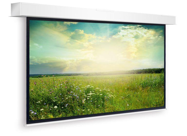 Professionelles Display - Projektionswand 560